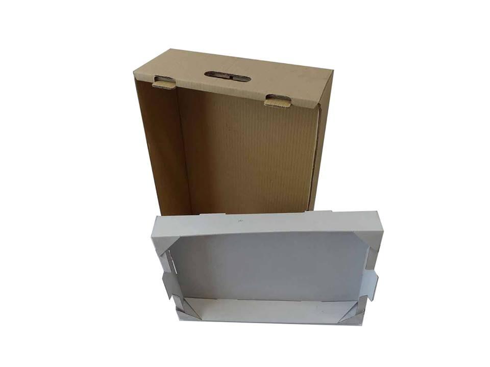 El cartón avanza como sistema de envasado práctico y sostenible