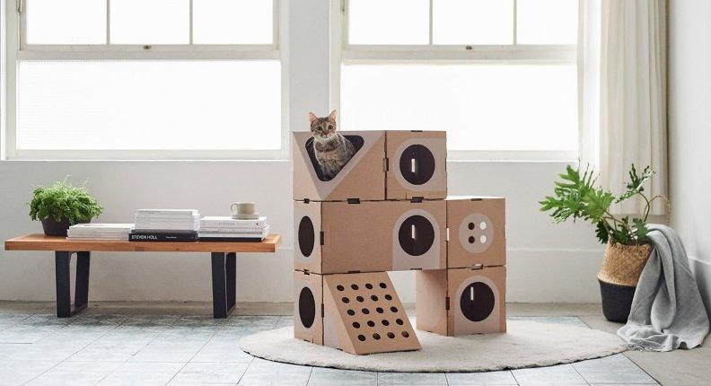 Cajas de cartón para gatos